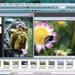 Program editat poze- PhotoFiltre