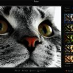 Program editat poze – Fotor